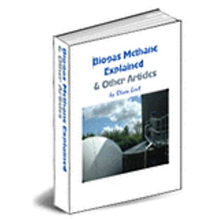 Biogas Methane Explained and other articles 250x250