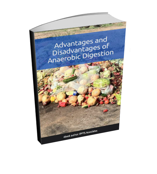 3D cover for Advantages & Disadvantages of Anaerobic Digestion
