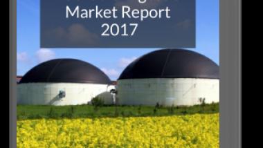 IPPTS UK anaerobic digestion-market report 2017 flat image