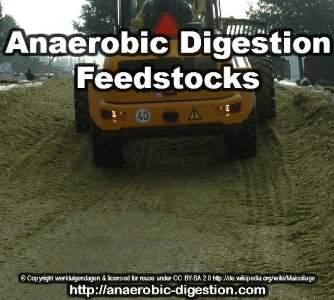 Anaerobic Digestion Feedstock Biogas silage 334x300