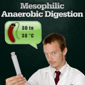 mesophilic temperature anaerobic digestion graphic for this AD page.