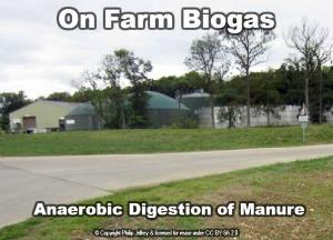 On Farm Manure Digestion