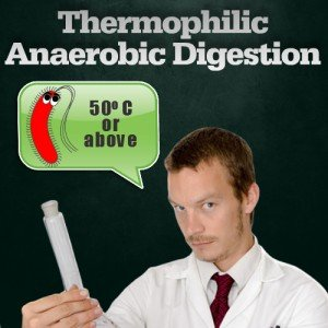 thermophilic graphic for anerobic digestion page
