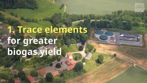 Image which shows: Trace elements additive for greater gas yield .