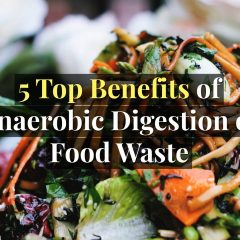 Benefits of Anaerobic Digestion of Food Waste