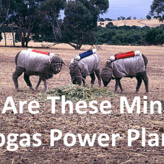 Amusing image of a potential 4 legged biogas power plants.