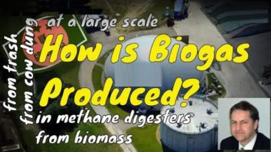 How is biogas produced introductory image to show the question and the related answers.