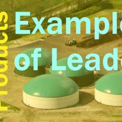 Featured image for Biogas Products Examples of Leaders.