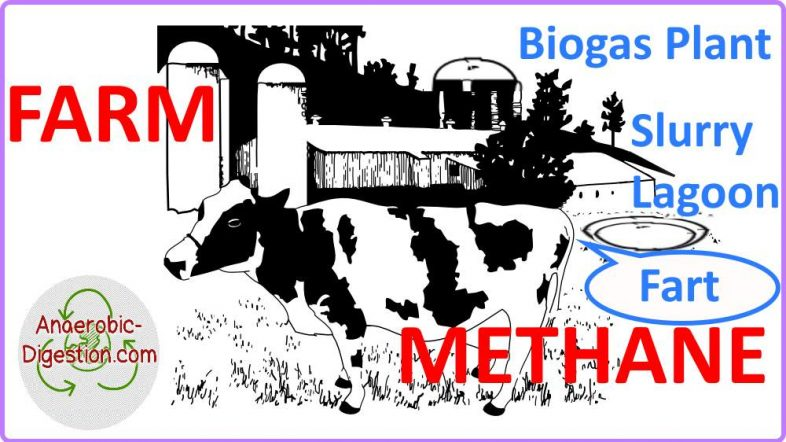 Image showing farm methane.