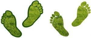 Image which shows footprints illustrates the UK Net Zero Carbon 2050 vision.