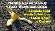 Separate food waste collection article - featured image.