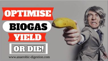 "Image is a funny meme which says ""Optimise Biogas Yield or Die""."