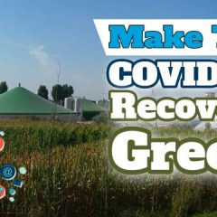 Image featured to explain that renewables industry is asking the government to make the COVID-19 recovery green.s